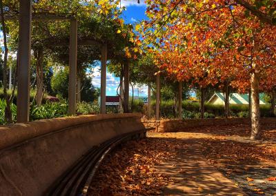Autumn walk - Hazelmont Cottage