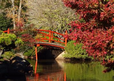 Red bridge over pond