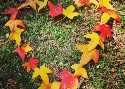 Autumn Leave in heart shape - Hazelmont Cottage